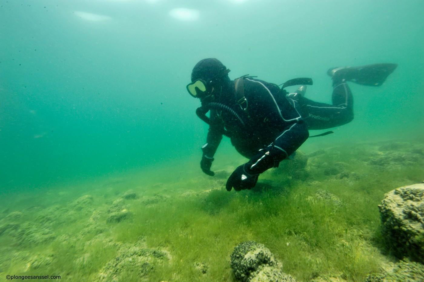 Comment se lester plongée